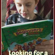 Looking for a Great Beginner Bible – A Zonderkidz Review