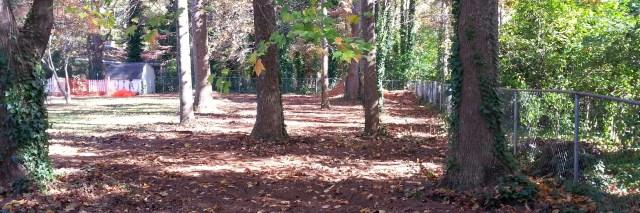 Backyard Pump Track in Georgia - Adventures In My Head
