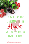 He who has not Christmas in his heart will never find it under a tree. Adventures in NanaLand