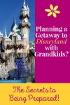 Planning a Trip to Disneyland with Grandkids? The Secrets to Being Prepared!