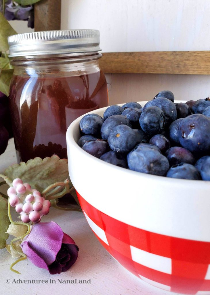 Bowl of blueberries with homemade syrup - Farmers Market with grandkids - Adventures in Nanaland