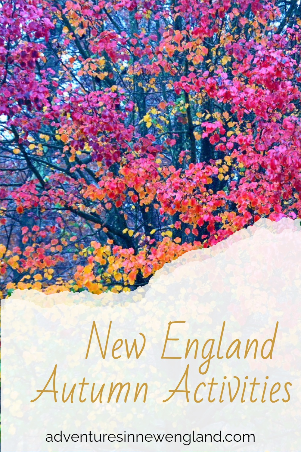 Click through to explore the best things to do in New England in fall in the perfect US autumn destination. #fallinnewengland #thingstodoinnewengland #fall