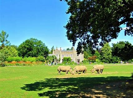 Cotswold Wildlife Park on adventuresinourvan.com blog