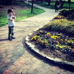 flower exploring