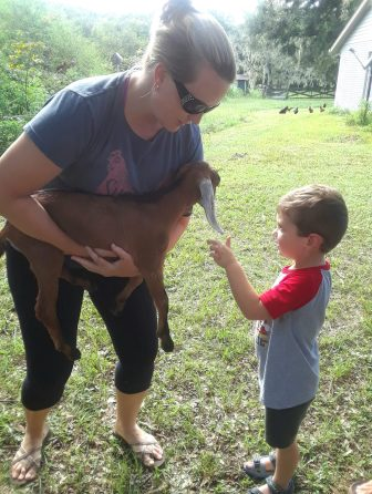James and baby goats