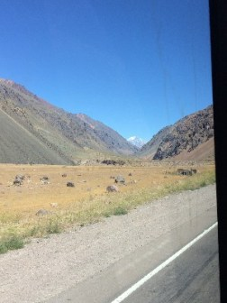 It was actually a really interesting drive up, the landscape was constantly changing...