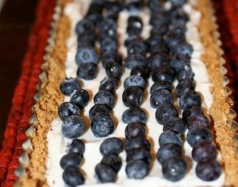 Honeyed Yogurt Blueberry Tart with Ginger Crust