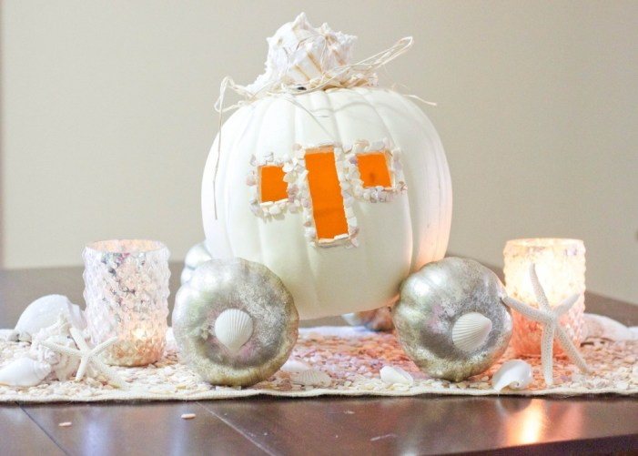 13 DIY pumpkin fairy tale carriage