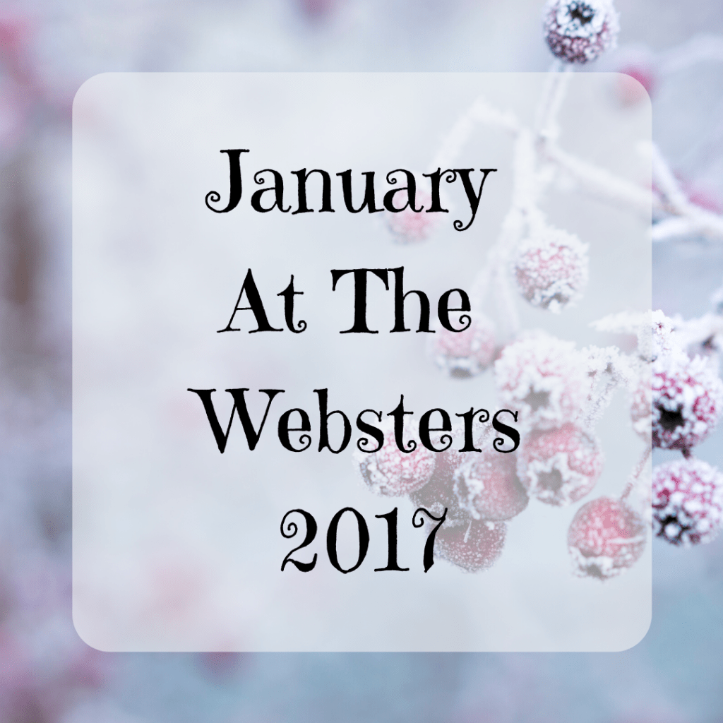 January Monthly Round-Up {2017}