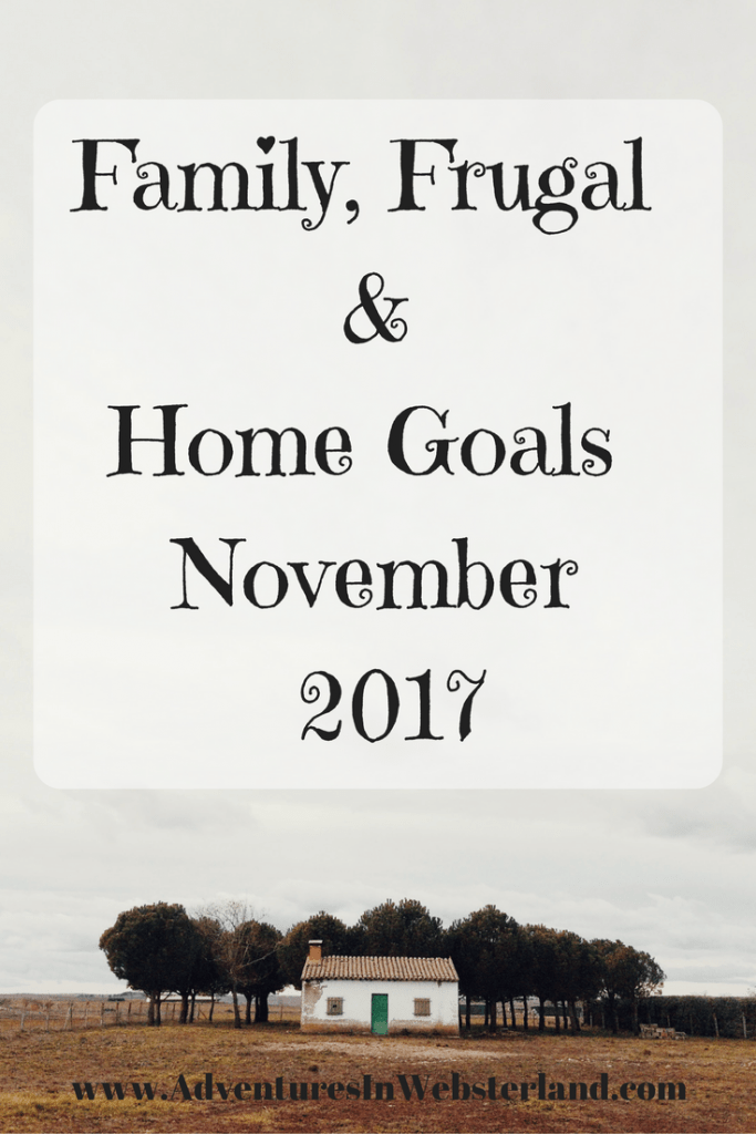 Family, Frugal & Home Goals For November 2017