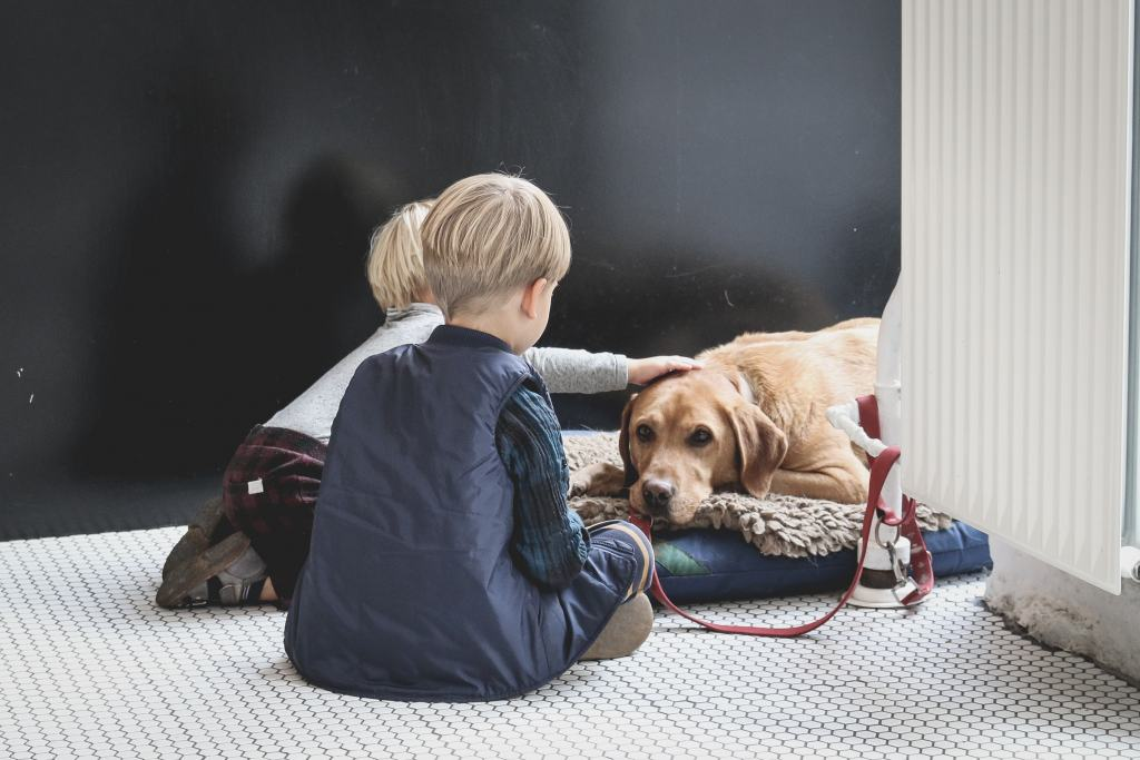 How Pets Can Help Child Development