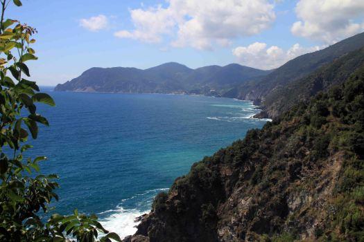 IMG_4428 view from corniglia