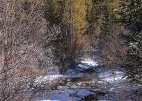img_9466-river