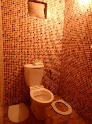 P3032267-toilet