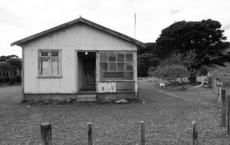Old abanded houses fill the remote areas of the North Island