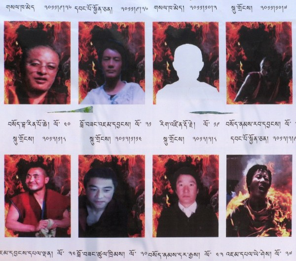 Eight (of thousands) monks who have given their lives via self-immolation to bring about greater awareness of the injustices taking place in Tibet by China