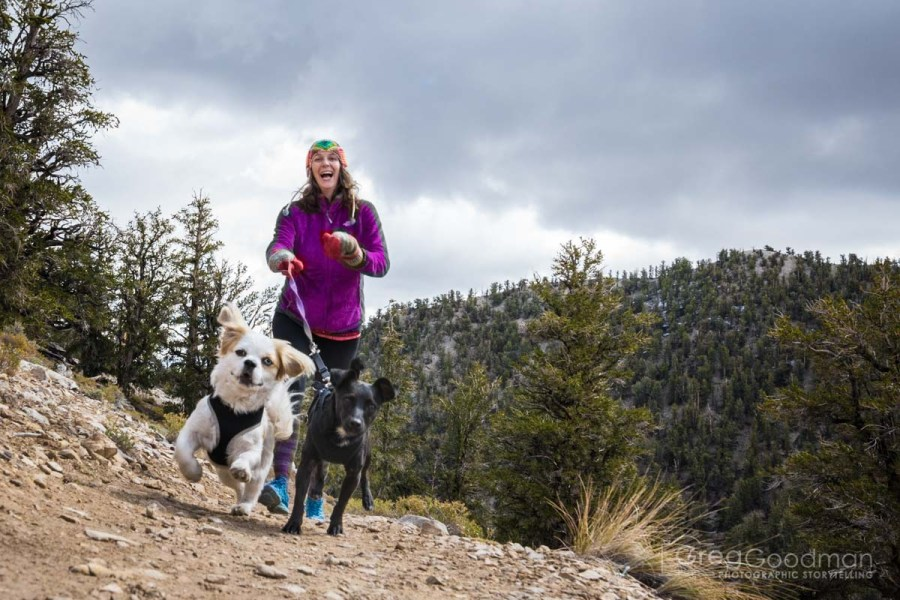 My darling wife, Carrie, goes for a run with our dogs - Falcor (left) and Gracie