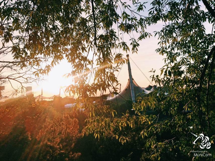 sunset at the olympic statium munich