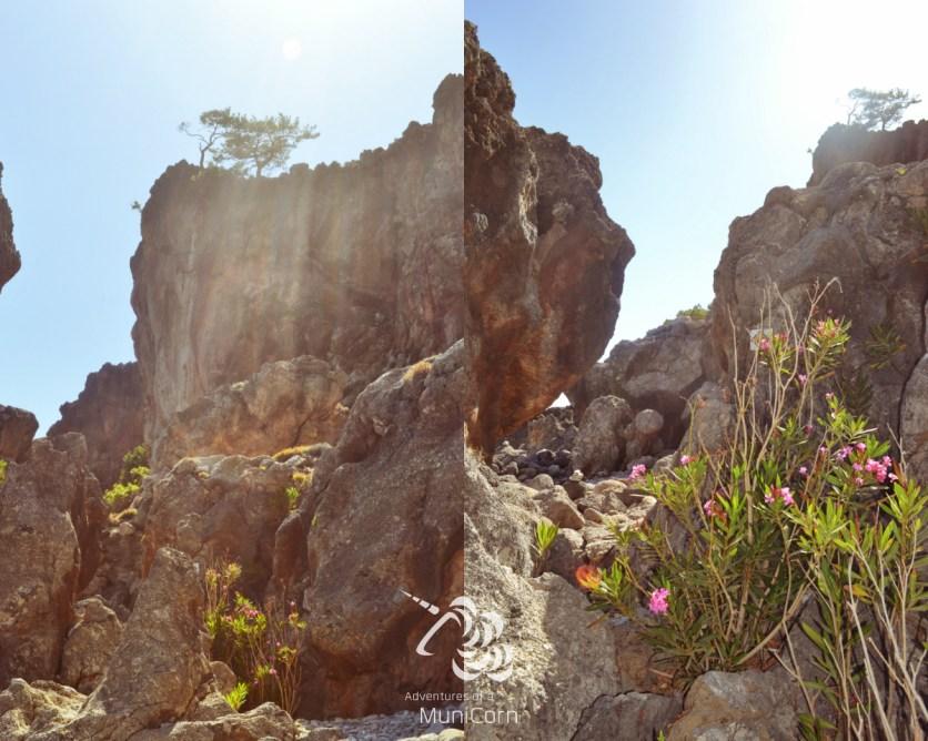nature of crete