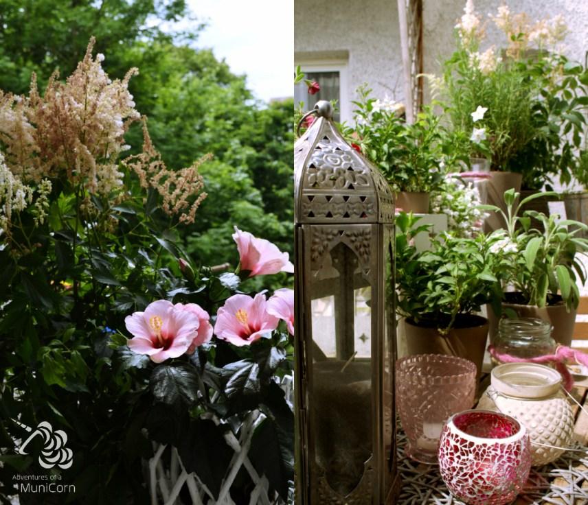 balcony hibiscus pink, grey, brown