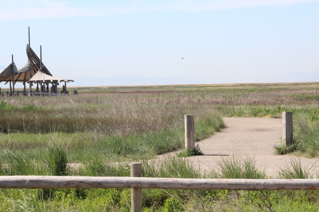 The Trail at Great Salt Lake Shorelands Preserve