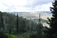 View at the end of Yad Vashem
