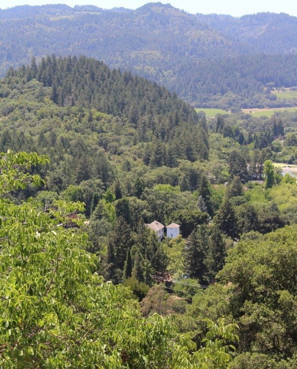 A view of Napa Valley