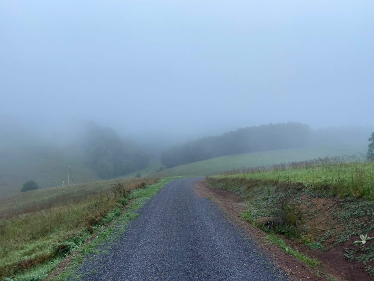More AM mist