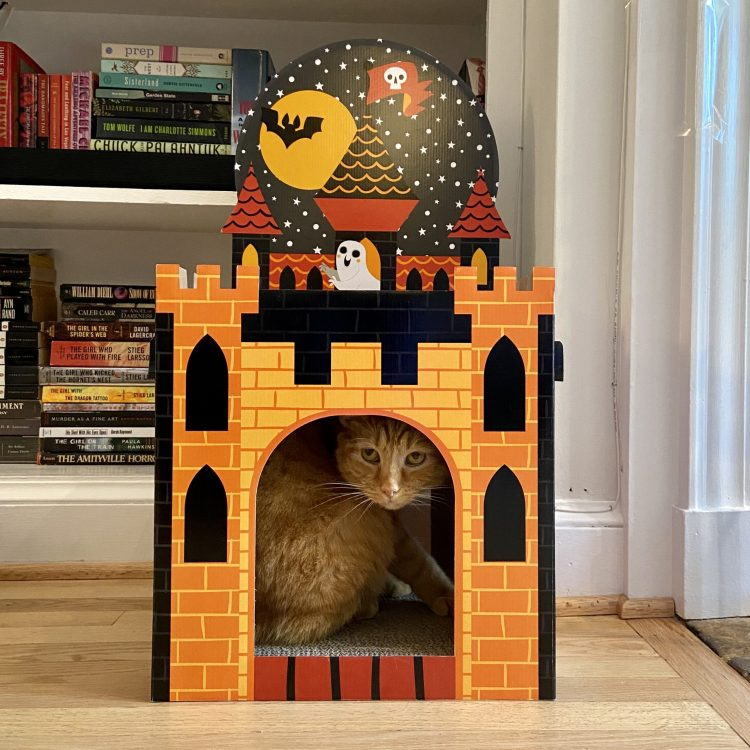 Haunted Cat Castle