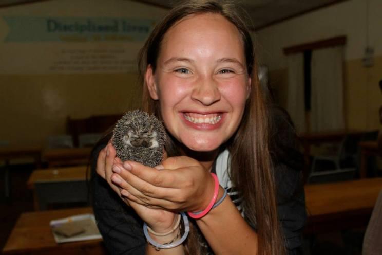 A team member of mine found a hedgehog!