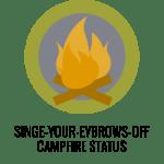Huge Fire Badge