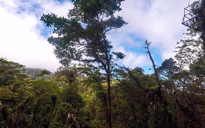 Monteverde Cloud          Forest,Costa Rica Guide
