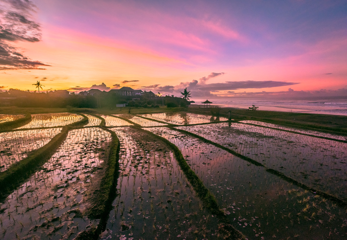 Sunrise Rice Terraces