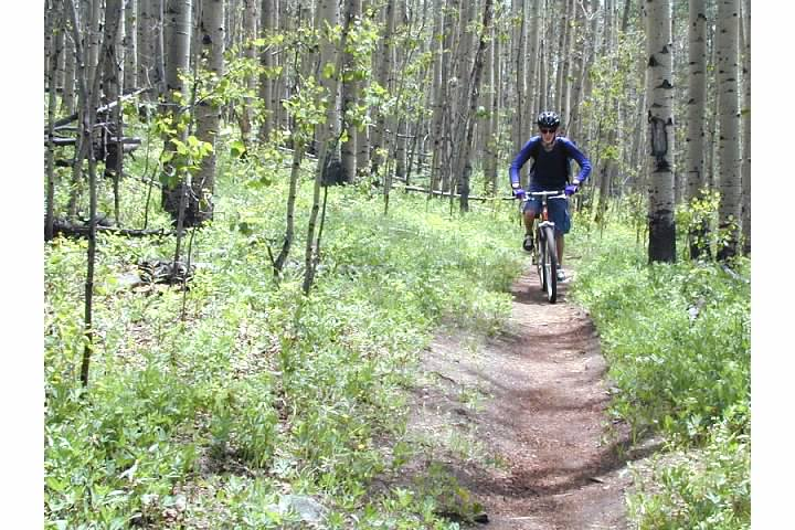 Mountain biking the Colorado Trail in the Fall.