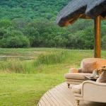Phinda Zuka Lodge - Wildlife View