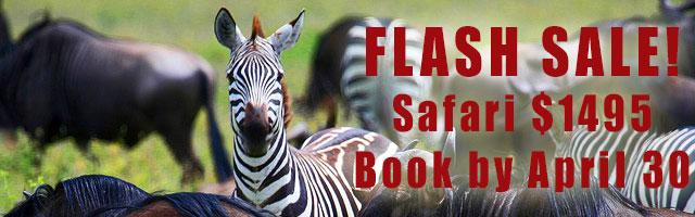 FLASH SALE!  Safari $1495 / Book by April 30