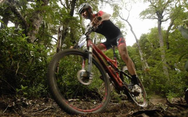 Rainforest mountain biking