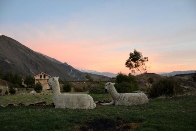Llanganuco Mountain Lodge