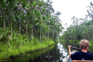 3-Day Muyuna Lodge Iquitos Amazon Lodge Excursion