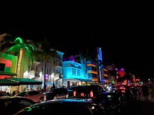 Ocean Drive | Adventures with Shelby