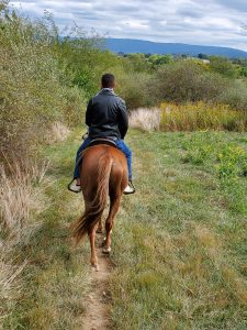 Horseback Riding Trail in Front Royal, VA | Adventures with Shelby