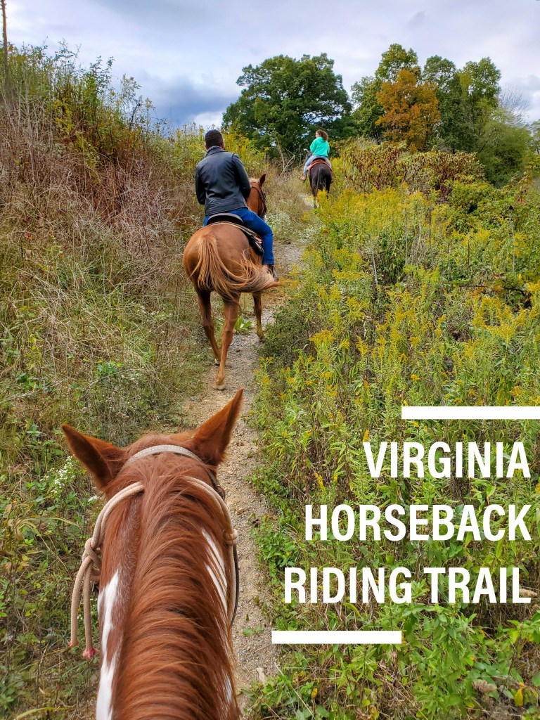 Horseback Riding Trail in Front Royal, Virginia | Adventures with Shelby