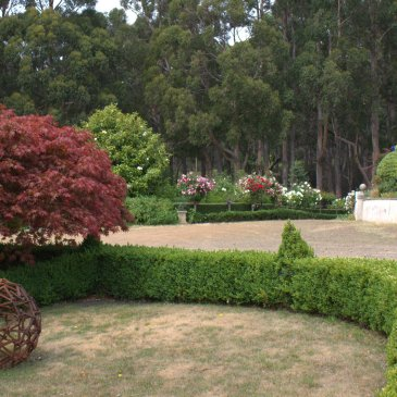 Garden at Hiba on Bruny Island