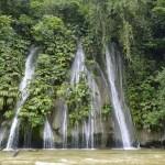 El Parque Nacional del Río Abiseo es un área natural peruana protegida por el ... que le da su nombre y corresponde a la ecorregión de las yungas del Perú.