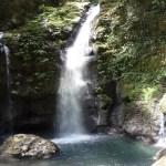 Parque Nacional Tingo María a 12 horas de lima