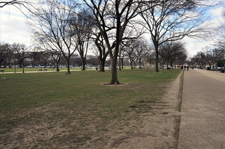 This is just a view of the National Mall and it's walk ways. across the America's front yard.