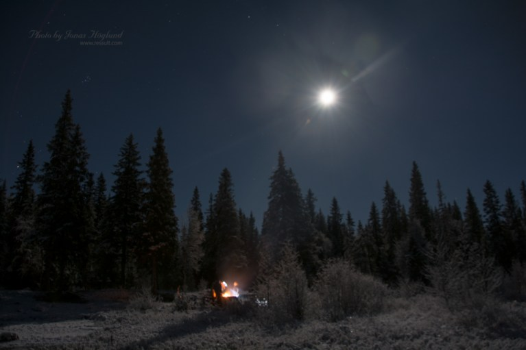 Moon and star lit adventures