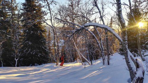 Ski guide in Åre