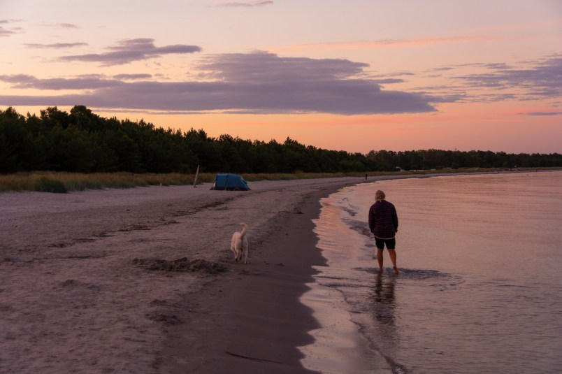 Evening stroll on the beach