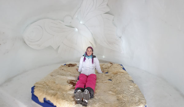Roo on an igloo bed